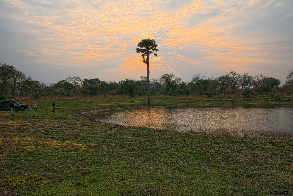 Teich bei Sonnenaufgang im Katavi